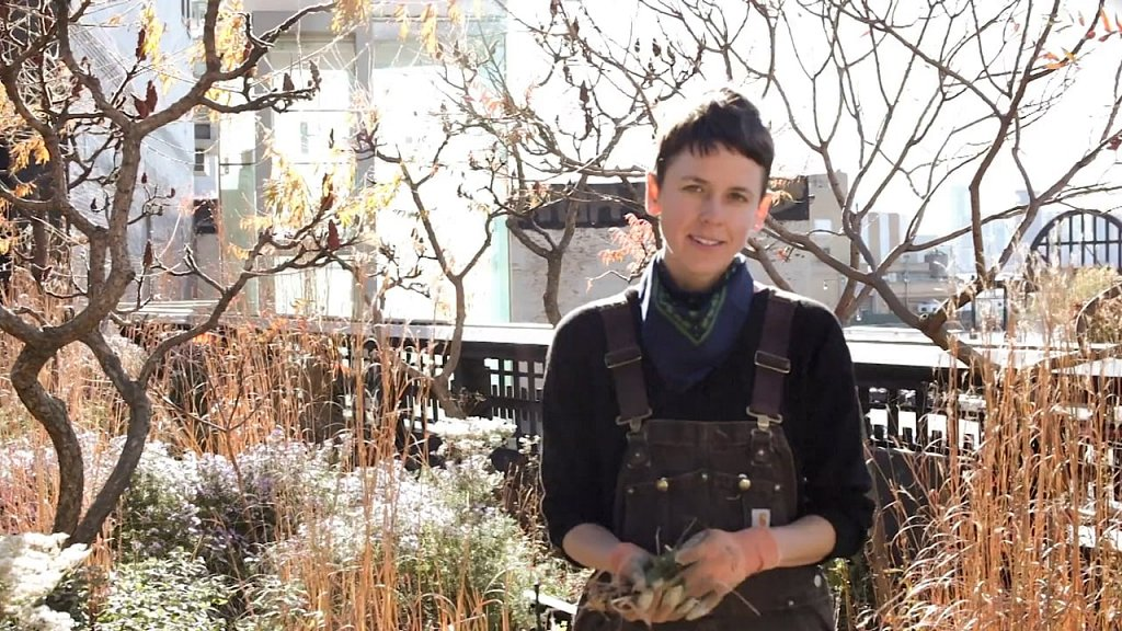 High Line gardener